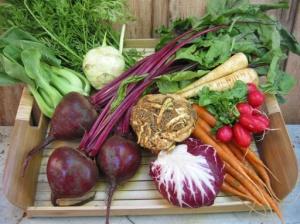 Zimní zelenina